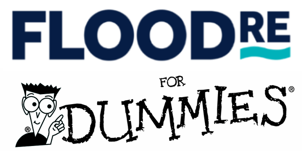 Flood Re Insurance Scheme for Dummies